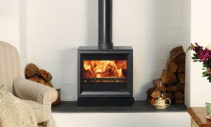 wood burning and multi fuel stove
